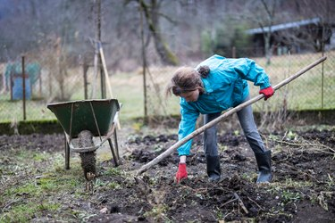 Mid Adult Woman Preparing Vegetable Garden in the Beginning of Springtime