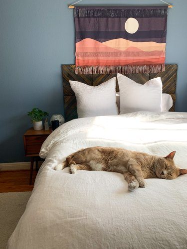 Bedroom with blue walls, wooden headboard, nightstand, white bedding, and sleeping cat.