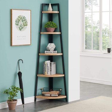 Bookshelves for Small Spaces with Bookcase, plants, books, art.