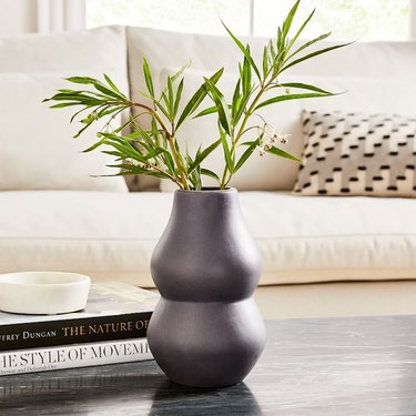 vase with plant near white couch
