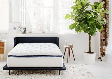 white and navy mattress in bright bedroom