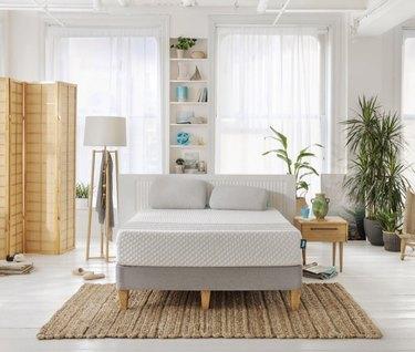 minimal natural bedroom with mattress