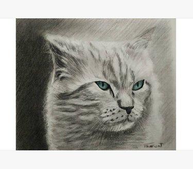Hand-drawn portrait of a cat
