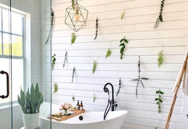 plant cutting wall in bathroom with wall white, white bathtub, glass shower, and window