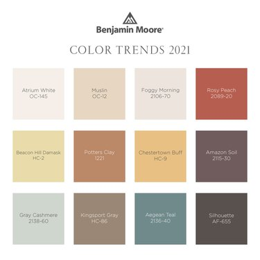 "graphic with title ""Benjamin Moore Color Trends 2021"""