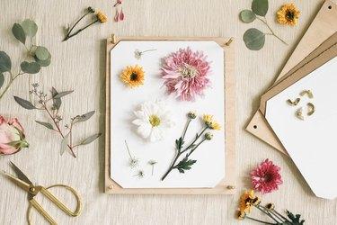 Seasonal flowers and a homemade flower press