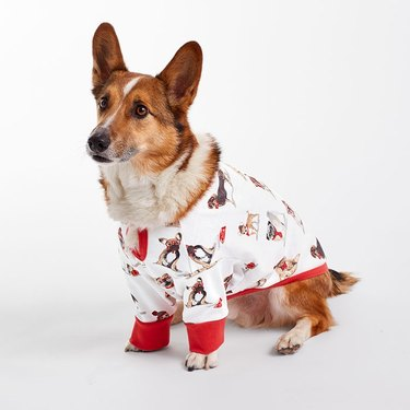 The Company Store dog pajamas