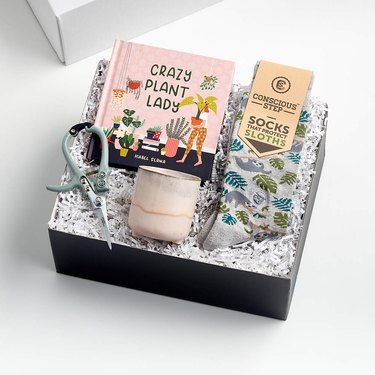 box with plant-related things like a book and socks