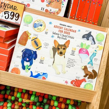 trader joes advent calendar for dogs