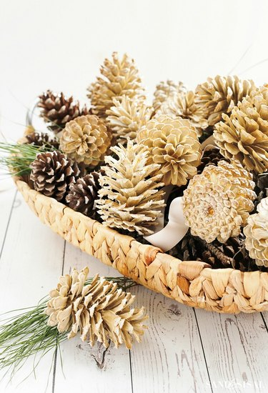 bleached pine cones in basket for decoration