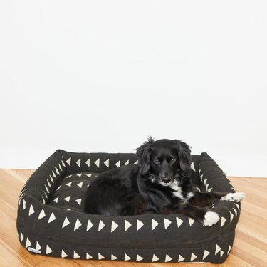 BackUpDesigns Pet Bed