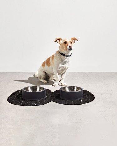 Slash Objects pet mat