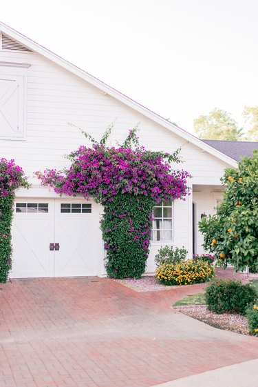 white garage door surrounded by pink flowers