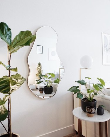 the sill plant