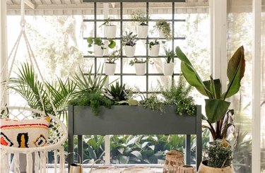 Spruce up your patio or balcony with a vertical garden wall