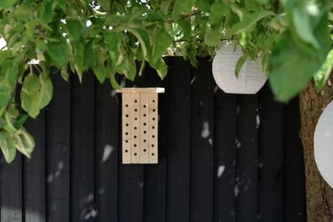 Modern wood bee house against black fence