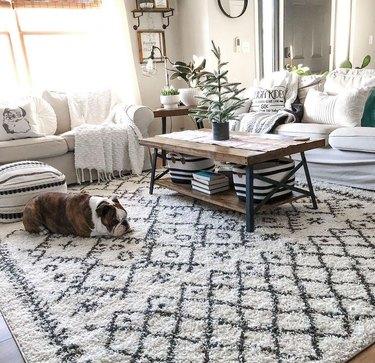 boutique rugs sale