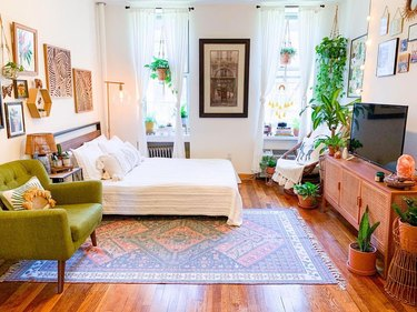 bedroom with framed artwork, television, and hanging plants