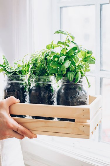 Place indoor herb garden next to a sunny window