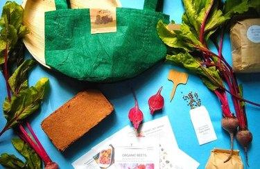 beets gardening kit