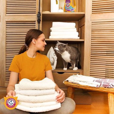 woman holding white towels and looking at a cat on a wood shelf