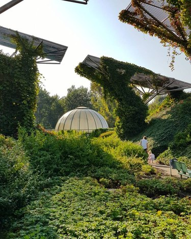 picture of the rooftop garden at the warsaw university library in poland