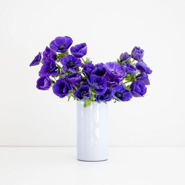 purple anemones in white vase