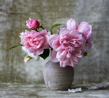 pink peonies in ceramic vase