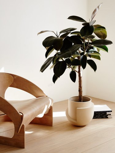 Need a Planter That Matches Your Design Style? Here Are 12 Pots Worth Considering