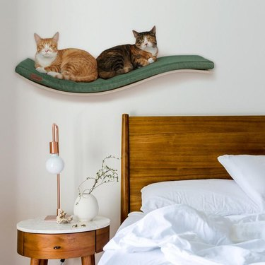 two cats on wall shelf near bed
