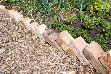 Re-used house bricks forming the edge of a garden planter