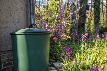 How to Set Up a Rain Barrel for Irrigation