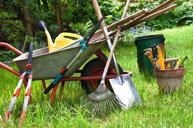 Various gardening tools in the garden