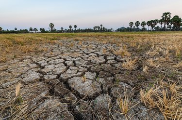 Dry cracked soil ground texture in fields