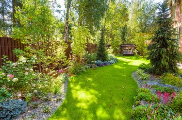 Landscaping in green home garden. Landscape design with plants and flowers at residential house. Scenic view of nice landscaped garden in backyard.