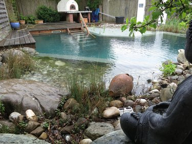 The pond maintenance. The result...