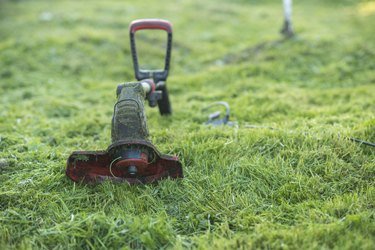 String trimmer lies on mown lawn middle of the yard