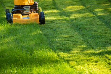 Lawn mower on grass in garden