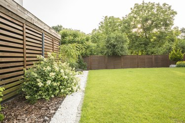 Flowers, trees and green grass in the garden of house with wooden screen. Real photo
