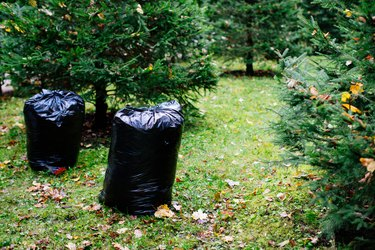 Black garbage bags filled with fallen leaves. Autumn season
