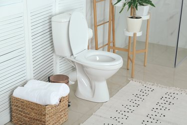 Stylish toilet bowl in bathroom interior