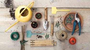 vegetable gardening header