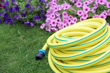 Plastic yellow rolled up hose pipe with connector on the grass and flowers