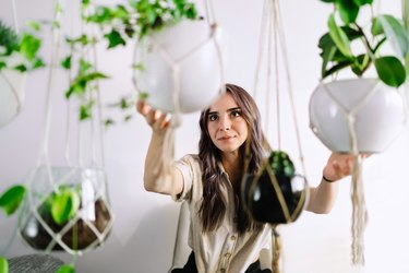 Portrait Of Beautiful Young Woman Holding Potted Plants At Home