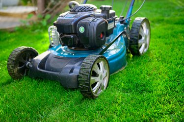 Lawn mower on green grass in backyard