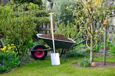 How (And When) to Hire a Gardener