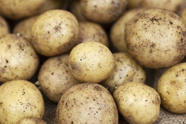 How to Grow a Potato in a Jar
