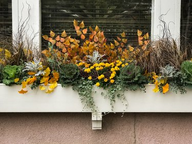 Fall flowers wooden flower box