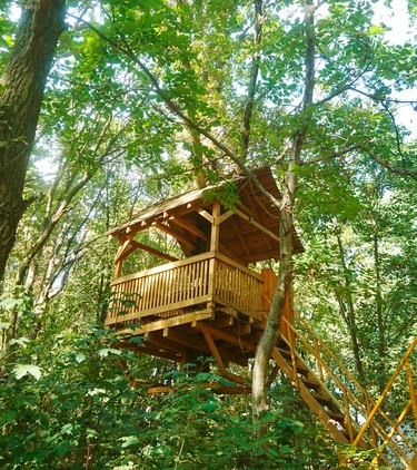 Treehouse in the summer forest.  Trees with green leaves.