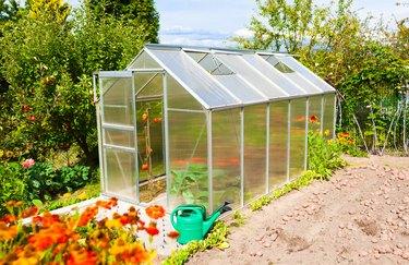 Green house in the garden